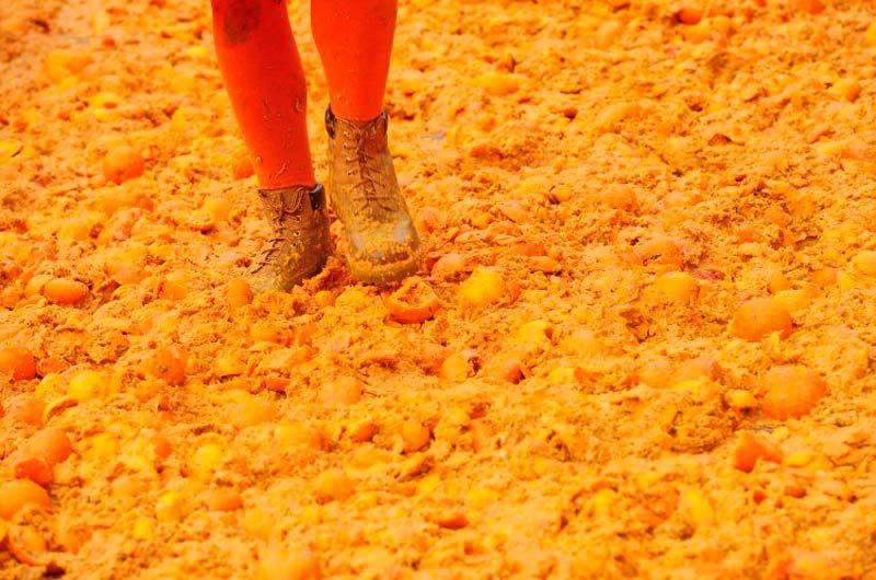 Апельсиновая баталия