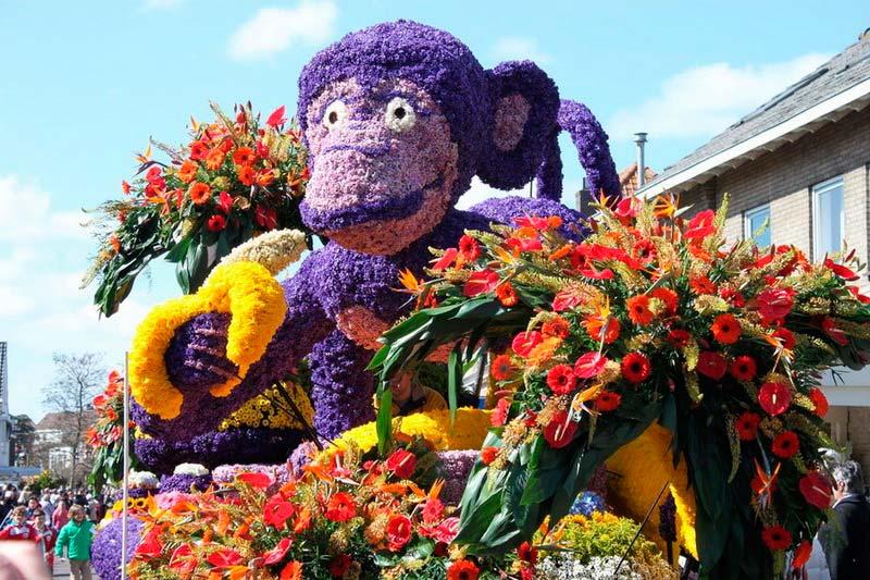 весенний парад цветов
