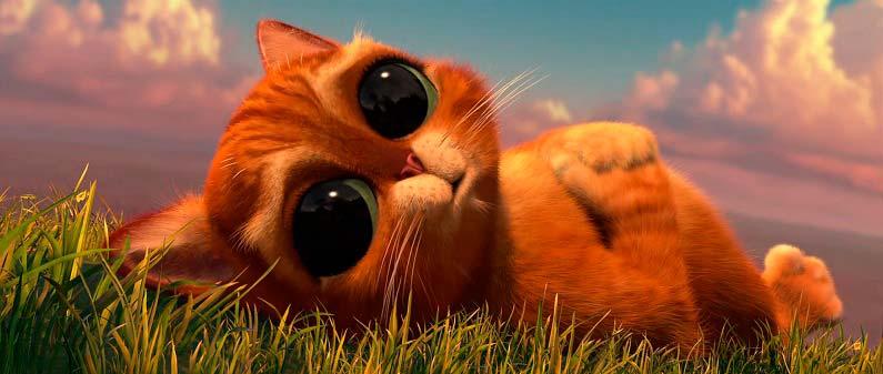 кот из шрека с грустными глазками