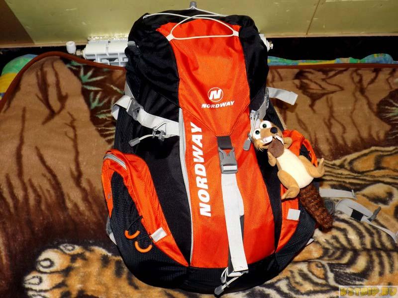 рюкзак с белкой