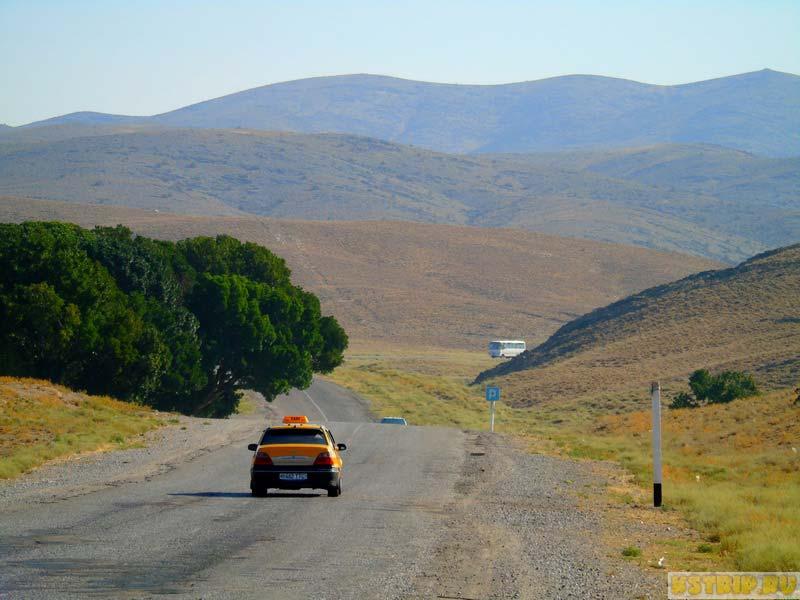 такси на дорогах Узбекистана
