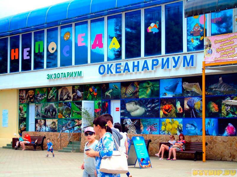 океанариум в Лазаревском