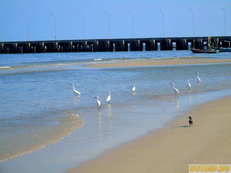 Наши впечатления о Хуа Хине: тихий рыбацкий городок для размеренной жизни