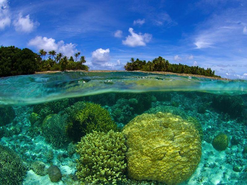 Экскурсии на Пхукете: Острова Корал, Рача и Майтон